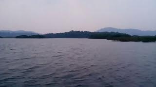 lake dragons