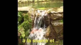 Republique Dominicaine Las Terrenas eco-tourisme