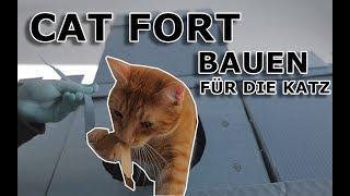Für die Katz - Cat Fort bauen