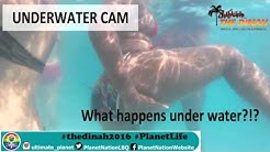 The Dinah - Underwater Cam