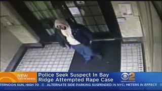 Police Seek Suspect In Bay Ridge Attempted Rape Case