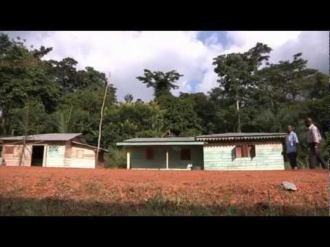 DISTRIBUTION DE TÔLES WELE-NZAS GUINEE EQUATORIALE
