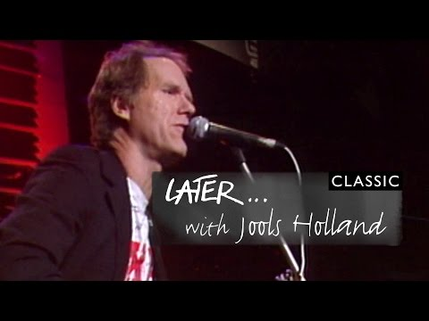 Loudon Wainwright III - The Doctor (Later Archive 1992)
