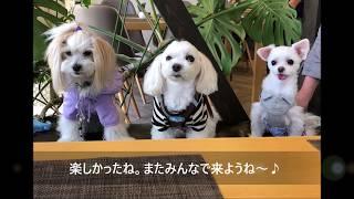 軽井沢ガーデンファームカフェにて.