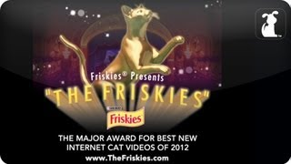 The Friskies Awards - This Wednesday LIVE! Hosted by Michael Buckley