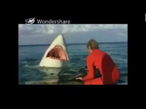 The Last Shark Death with Jaws Music