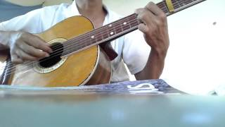 Hoa bằng lăng - Guitar