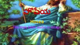 Hosea (హొషేయ)_ The Holy bible audio in telugu.wmv