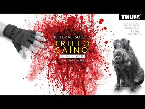 Trillo Saino 4ta Edicion - Video de Control