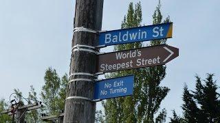 Baldwin Street, Dunedin, New Zealand - World's Steepest Street