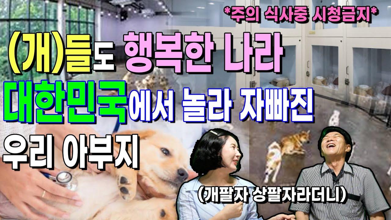 충격! 개들도 행복한 나라, 대한민국에서 놀라 자빠진 우리 아부지!!!(북한에서 내 인생은 남한의 개만도 못했었구나!!, 개도 권리가 있다!)