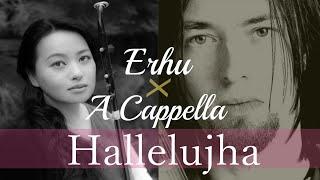 Hallelujah on Erhu with Chorus - Beautiful, Mystical Version  JUN MIZUKI  レナード・コーエン「ハレルヤ」二胡 翠月淳