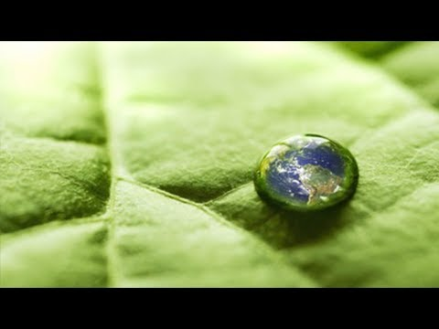 Voices and Votes: Environmental protection