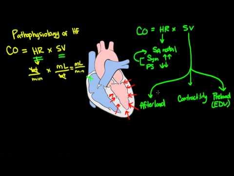 Khan Video 2 Heart Failure: Pathophysiology