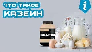 Казеин (казеиновый протеин, белок). Как принимать?