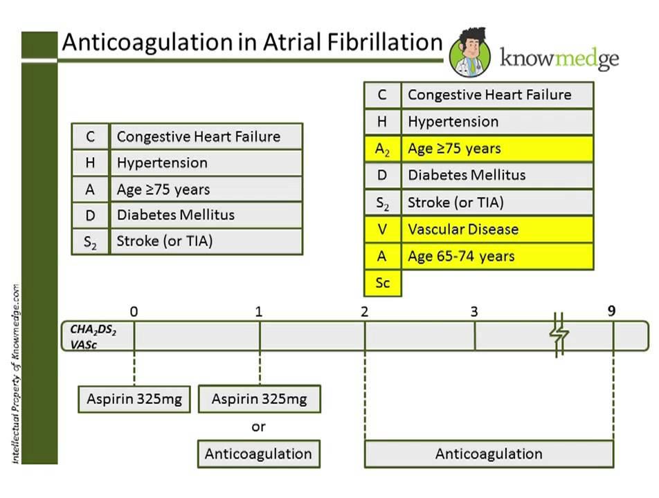 Internal Medicine ABIM Board Exam Review Question: Anticoagulation in  Atrial Fibrillation