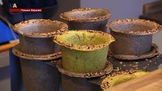Супы в съедобных стаканах