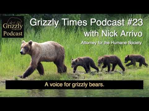 Grizzly Times Podcast 23 - Nick Arrivo - Attorney for the Humane Society