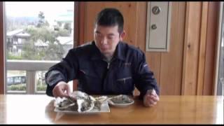 島根県隠岐 海士町漁協直営「大漁WEB」に掲載 http://ama-gyokyo.shop-p...