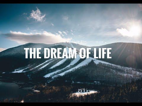 The Dream Of Life (Alan Watts) // Eric Yang