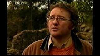 Aidan Wrynne on RTE