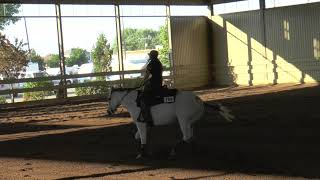 Freestyle Reining Top Meg Boogies (Zombie - Bad Wolves) Video