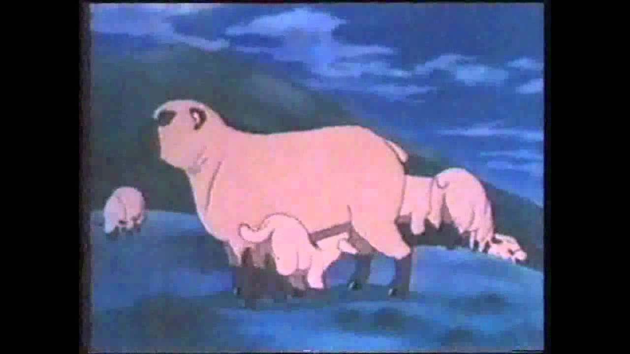 Roaming Dogs And Sheep 1984