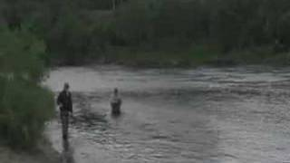 Atlantic Salmon Fishing - Kola Russia