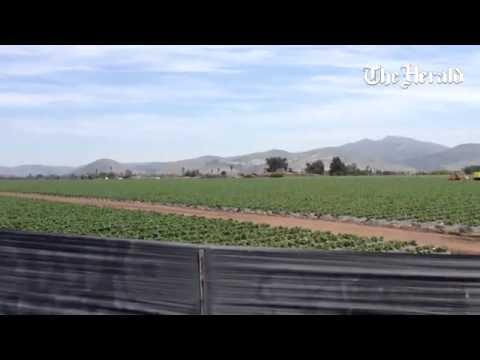 Gavilan View Middle School Profile (2018-19)   Salinas, CA