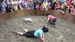 ▶️ Bịt Mắt Bắt Lợn Xem Cười Vỡ Bụng ❤️ Game Pig Eye Catcher