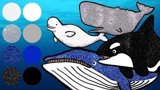 Sea Animals for Kids, Learn Names and Sounds | Killer Whale, Sperm Whale, Blue Whale, Beluga