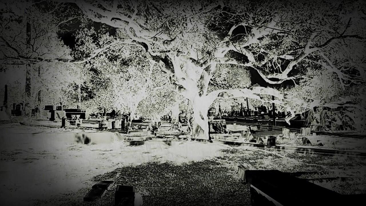 Pinewood Cemetery Daytona Beach You