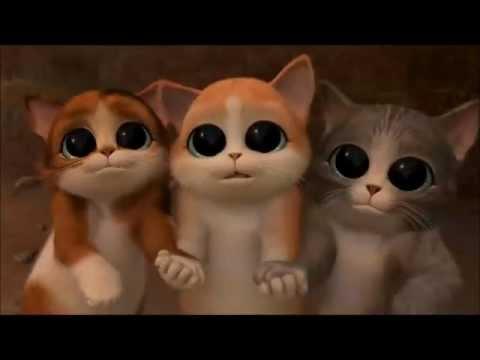 La pelea de ojos del gato con botas hd - YouTube