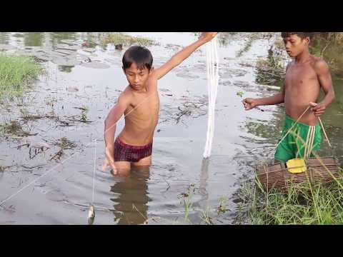 Fishing Technique - Awesome Boys Trap Fish With RonongSar Line Multiple Knots | Cambo Trap Fishing