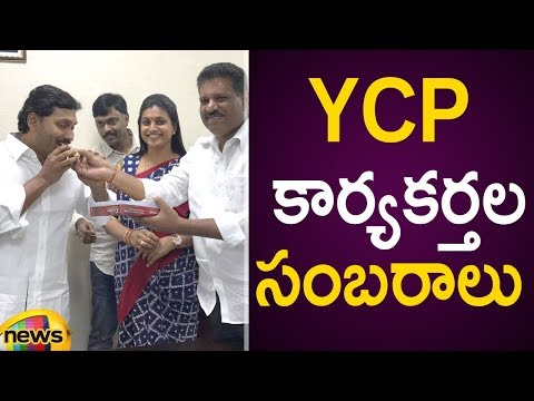 YCP Leaders Celebrating The Victory   AP Election Results 2019 Live Updates   #YSRCP   Mango News