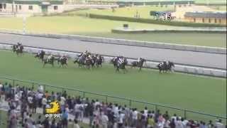 ゴールドベル 清洲特別(500万下) 2013/06/29