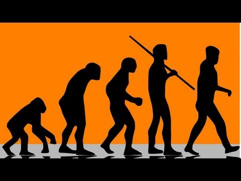 evolution of human art essay Human evolution essay writing service, custom human evolution papers, term papers, free human evolution samples, research papers, help the anthropologists agree that culture presents a lot to the evolutionary process this argument is based on the fact that culture affects all aspects of life.