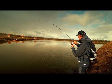 Эта приманка сделала РЫБАЛКУ! Рыбалка в запрет. Ловля форели