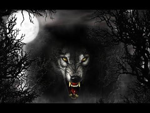 🌐 ЖИЗНЬ ПОСЛЕ ЛЮДЕЙ 🌐 хищники захватят мир людей