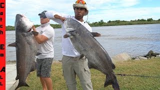 catching-giant-catfish-at-the-boat-ramp