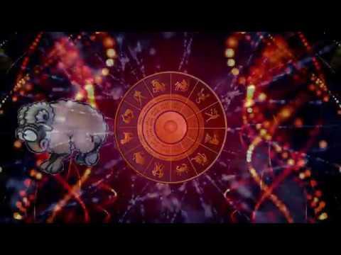 Шуточный гороскоп на 2018 год по знакам зодиака в стихах - год собаки