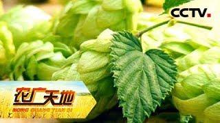 《农广天地》走进乌鲁木齐(三) 20180706    CCTV农业