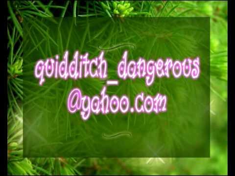 Quidditch (One in a million)