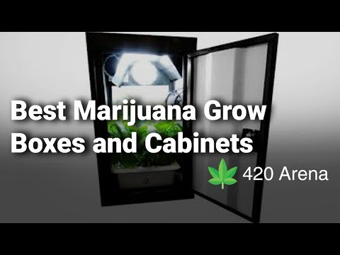Best Marijuana Grow Boxes And Cabinets: Complete Reviews With Features & Details - 2019