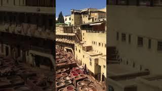 Morocco  Pez Tannery / 페즈 테너리 …
