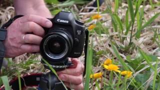 NOVOFLEX Macro photography with Bernd Ritschel