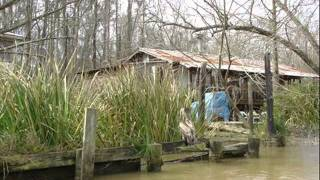 I'm Yvonne (From The Bayou) by Goldie Hill