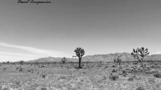 Desert Companion: Look On Down from the Bridge (Mazzy Star cover) mp3