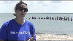 Teaching with The Stars Field Trip - Oysters in Corpus Christi Bay