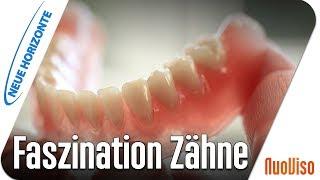Faszination Zähne - Prof. Werner Becker u. Alfred Dietrich
